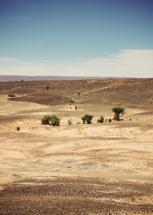 Sahara_17